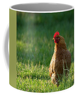 Morning Chicken Coffee Mug