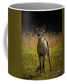 Morning Doe Coffee Mug