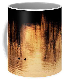 Coffee Mug featuring the photograph Morning Ducks 2017 by Bill Wakeley