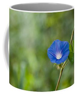 Morning Glory Coffee Mug