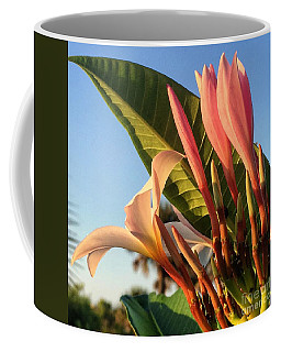 Coffee Mug featuring the photograph Morning Heaven by LeeAnn Kendall