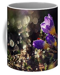 Morning Impression With Violet Crocuses Coffee Mug by Jaroslaw Blaminsky