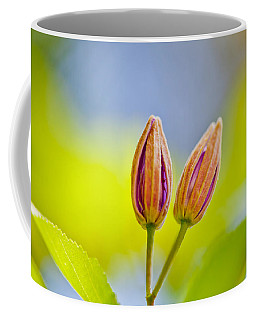 Morning Joy Coffee Mug