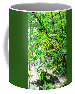Coffee Mug featuring the photograph Morning Light In The Forest by Thomas R Fletcher