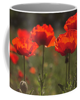 Morning Light In The Poppies Coffee Mug