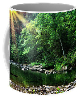 Coffee Mug featuring the photograph Morning Light On Williams River  by Thomas R Fletcher