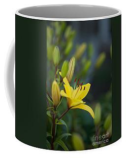 Morning Lily Coffee Mug