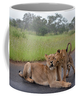 Morning Play Coffee Mug