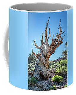 Morning Salutation Coffee Mug