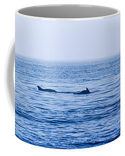 Morning Search For Food Coffee Mug by Allan Levin