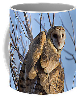 At The Dawning Of The Day Coffee Mug
