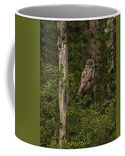 Morning Sun On A Great Grey Coffee Mug