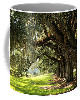 Morning Under The Mossy Oaks Coffee Mug