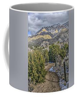 Morning Walk Coffee Mug by Alan Toepfer