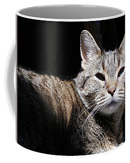 Morning Warmth Coffee Mug by Charles Ables