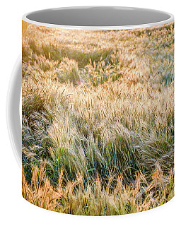 Morning Wheat Coffee Mug