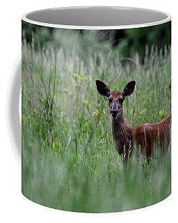 Morninng Deer Coffee Mug