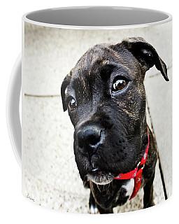 Coffee Mug featuring the photograph Moshi by Shawna Rowe