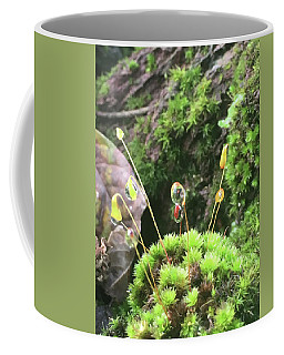 Coffee Mug featuring the photograph Moss And Dewdrops by Kelly Hazel