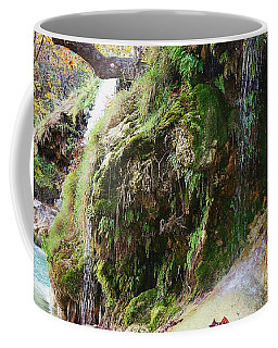 Moss And Waterfalls Coffee Mug by Sheila Brown