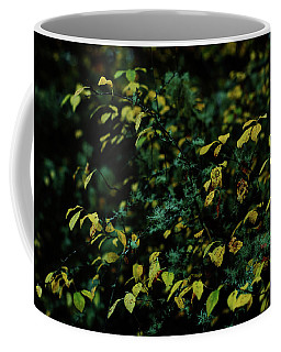 Coffee Mug featuring the photograph Moss In Colors by Gene Garnace