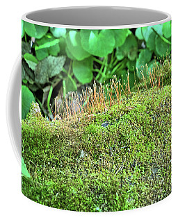 Moss Kingdom Coffee Mug