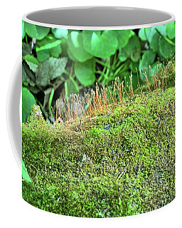 Moss Kingdom Coffee Mug
