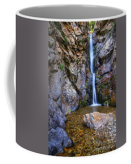 Moss Ledge Waterfall Coffee Mug