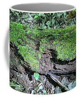 Moss On A Log 2 Coffee Mug