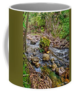 Coffee Mug featuring the photograph Mossy Boulder by Christopher Holmes