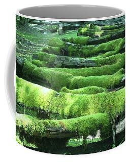 Mossy Fence Coffee Mug