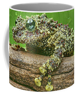 Coffee Mug featuring the photograph Mossy Frog by Nikolyn McDonald