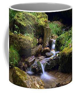 Mossy Glenn Spring 2 Coffee Mug by Bonfire Photography