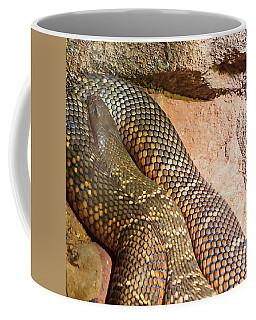 Coffee Mug featuring the photograph Most Venomous Snake  by Miroslava Jurcik