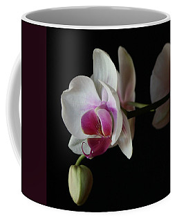 Moth Orchid 1 Coffee Mug by Marna Edwards Flavell