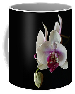 Moth Orchid 2 Coffee Mug by Marna Edwards Flavell