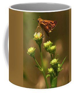 Moth Sitting On Yellow Flower Coffee Mug