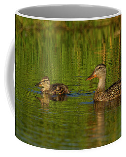 Coffee Mug featuring the photograph Mother And Child Mallards by Jean Noren