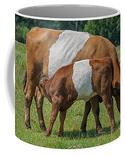 Coffee Mug featuring the photograph Mother And Child by Patricia Hofmeester