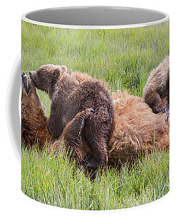Mother Grizzly Suckling Twin Cubs Coffee Mug