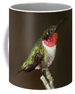 Mother Nature's Jewel Box Coffee Mug