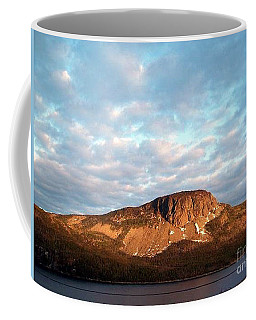 Mottled Sky Of Late Spring Coffee Mug by Barbara Griffin