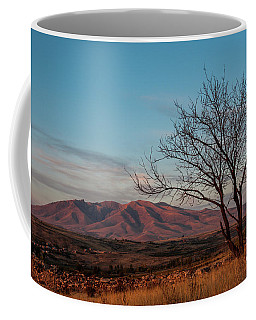 Mount Ara At Sunset With Dead Tree In Front, Armenia Coffee Mug
