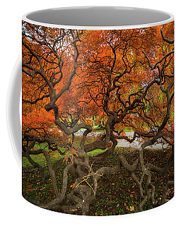 Mount Auburn Cemetery Beautiful Japanese Maple Tree Orange Autumn Colors Branches Coffee Mug