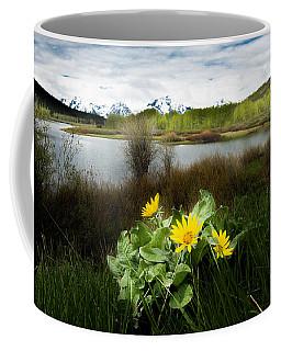 Mount Moran Spring Coffee Mug