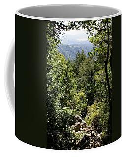 Mount Tamalpais Forest View Coffee Mug
