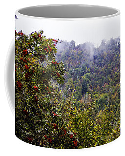 Mountain Ash On A Misty Mountain Coffee Mug