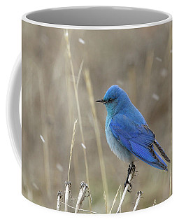 Coffee Mug featuring the photograph Mountain Blue Bird by Ronnie and Frances Howard