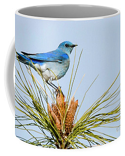 Mountain Bluebird Coffee Mug