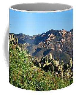 Coffee Mug featuring the photograph Mountain Cactus View - Santa Monica Mountains by Matt Harang